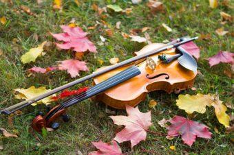 [WROCŁAW] – lekcje gry na skrzypcach