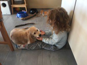 Zabawa dziecka z psem