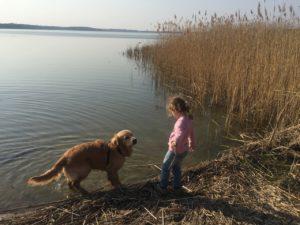 Dziewczynka z psem nad jeziorem